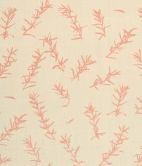Rosemary Pale Pink Natural