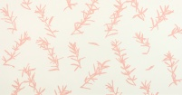 Rosemary Pale Pink
